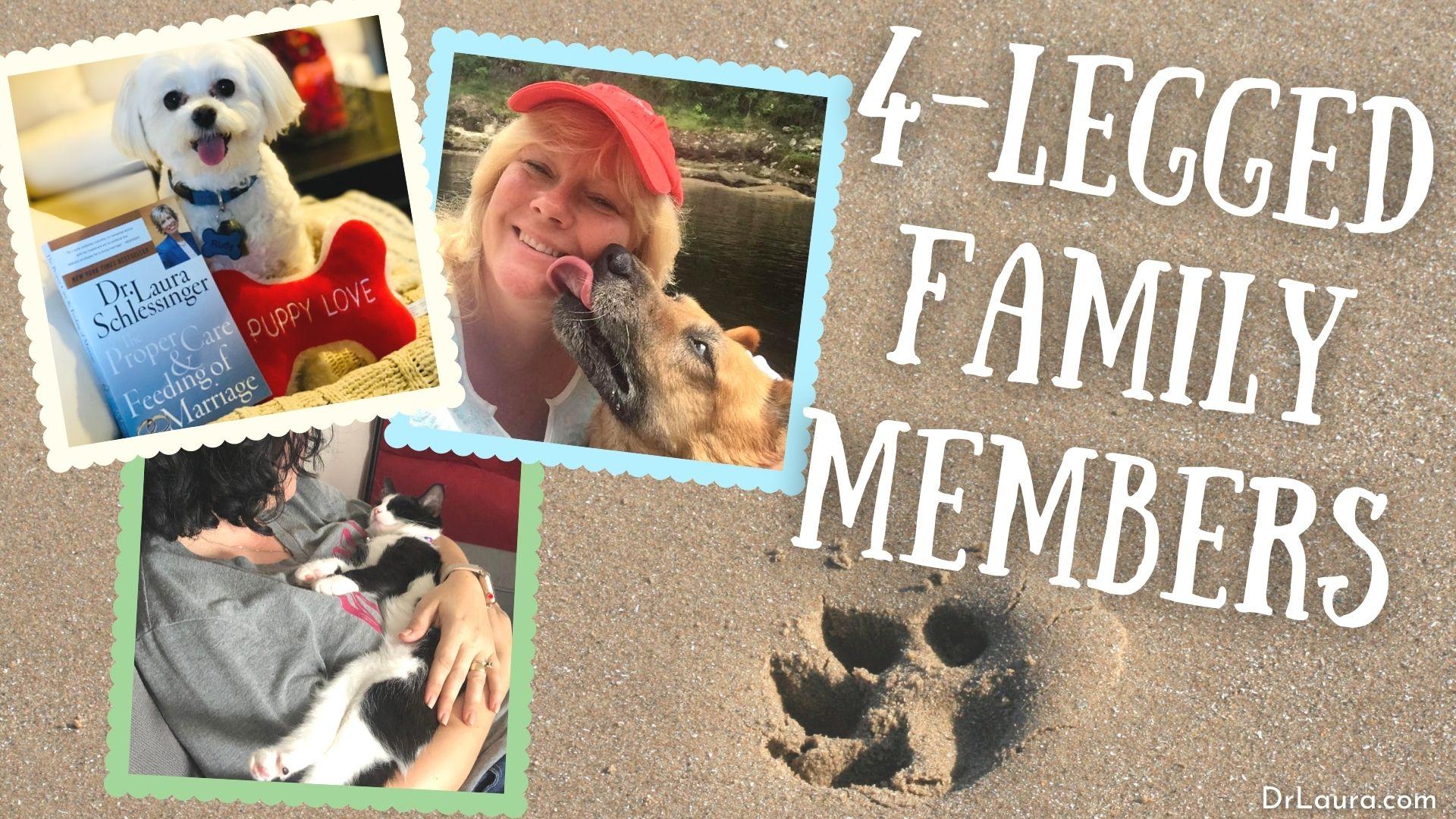 YouTube: 4-Legged Family Members
