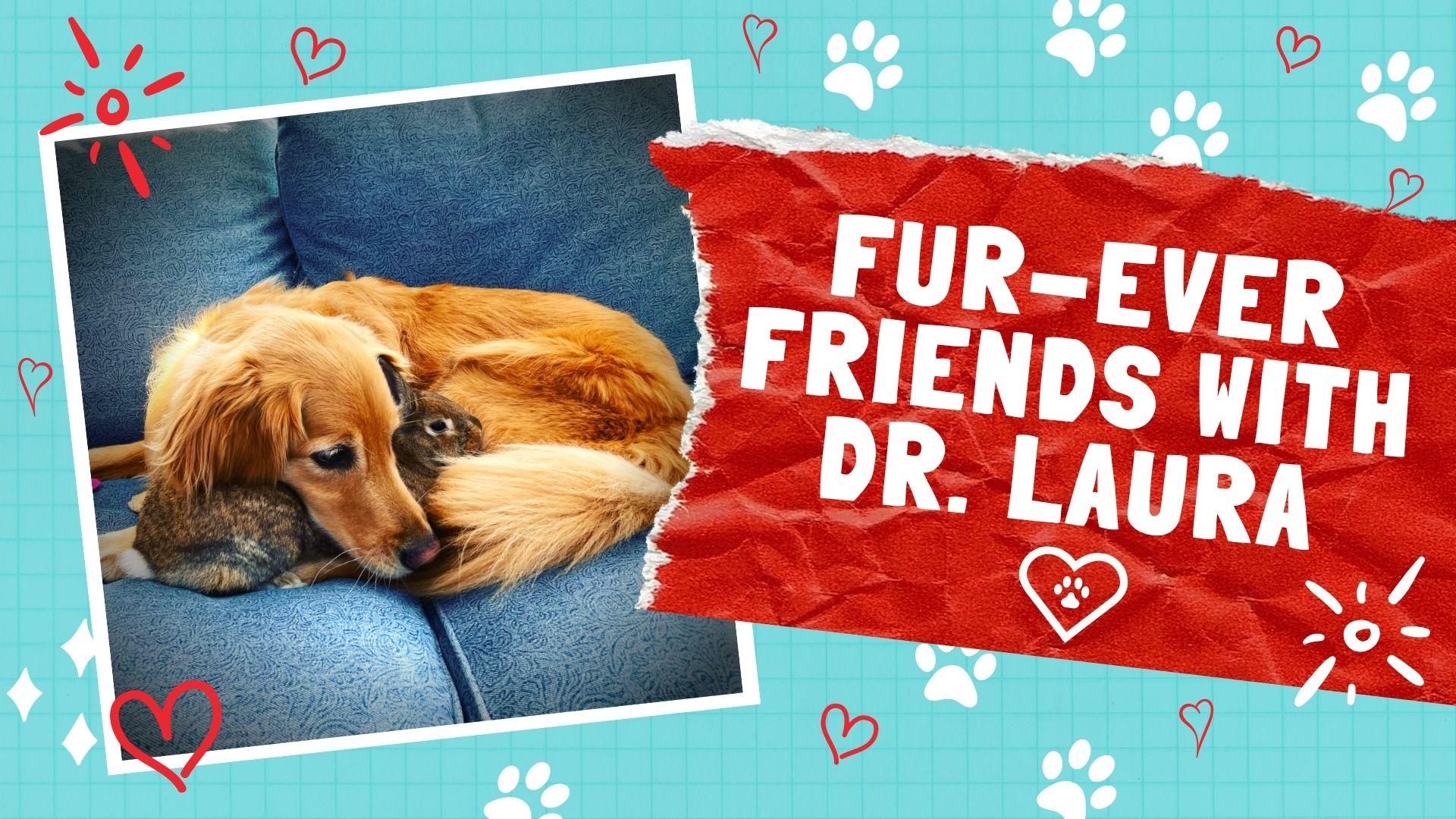 YouTube: Fur-Ever Friends with Dr. Laura