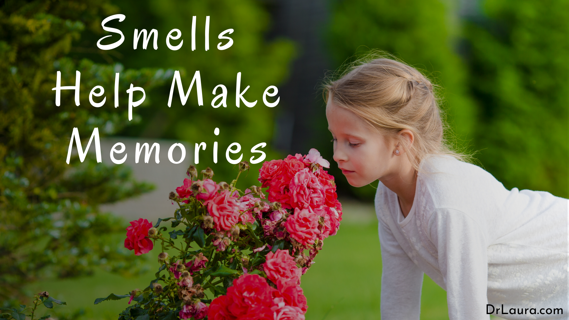 Email of the Day: Smells Help Make Memories